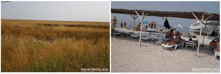 Пляж и степь острова Джарылгач
