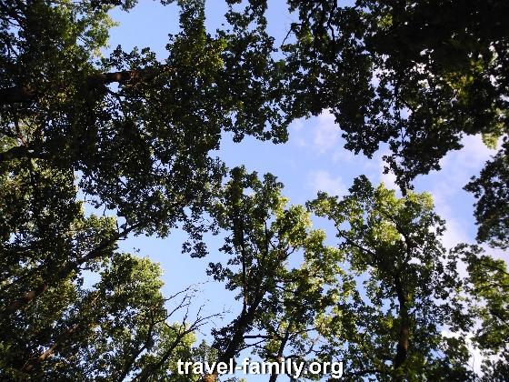 Отдых на речке в Корнине рядом с Дубравой
