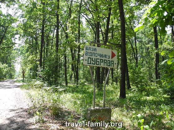 Как доехать до речки в Корнине - дорога через лес