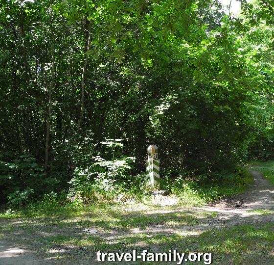 Как доехать до речки в Корнине - дорога через лес и последний поворот