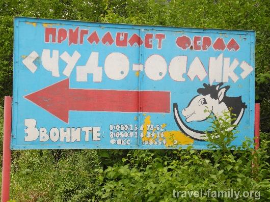 Пропутинским байкерам не дали грант президента РФ - Цензор.НЕТ 5527
